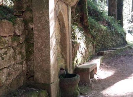 Serra san bruno, VV.  Fontanella dietro Santamaria nel bosco. Anno 1190