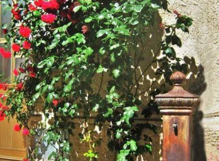 Le fontane di Decollatura nel catanzarese